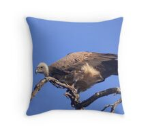 Regally scavenging Throw Pillow