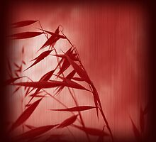 Grass red1 by Bianca Stanton