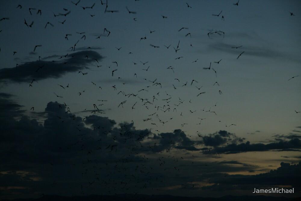 Going Batty by JamesMichael