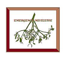 Emergency Mistletoe Framed by Radwulf