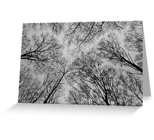 Trees # 3 Greeting Card