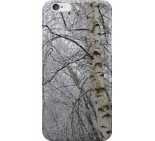 Its Snow Time of Year iPhone Case/Skin
