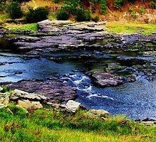 When The River Is Low by Suni Pruett