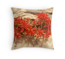 Paintbrush in Sandstone Throw Pillow