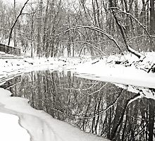 Snow-Covered by sara montour