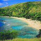 Hanauma Bay, Oahu, Hawaii by SusanC