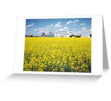 Canola field, Huxley, Alberta Greeting Card