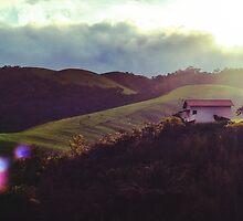 Uma casa no campo by giovanibr