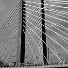 Tilikum Crossing, Bridge of the People (Portland) by AmishElectricCo
