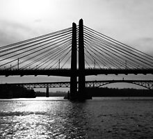 Tilikum Crossing and Ross Island Bridge (Portland) by AmishElectricCo