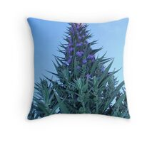 Point to the Sky Throw Pillow
