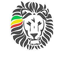 Lion Order LRG Photographic Print