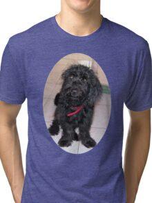 Cute dog Tri-blend T-Shirt