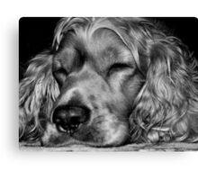 Sleepy,,,sleepy Canvas Print