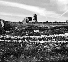 Inishmore - Aran Island  by Carl Gaynor