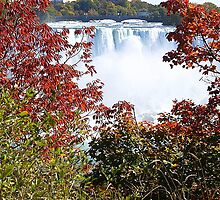 Niagara in the Fall. by vette