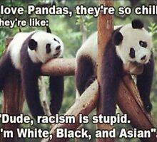 Non-Racist Panda by NesNinja