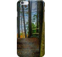 Hemlock Ravine Park iPhone Case/Skin