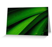Greener than Green Greeting Card