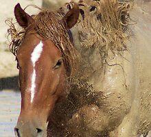 Mud Bath by Gene Praag
