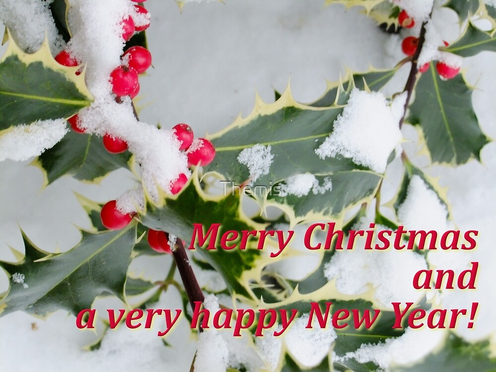 Merry Christmas and Happy New Year by Themis