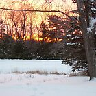 December 3 Sunrise by NiftyGaloot