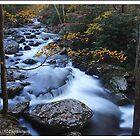Autumn on Tremont, GSMNP by ThomasRBiggs
