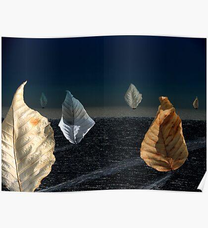 Moonlit Sail Poster