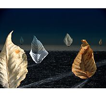 Moonlit Sail Photographic Print