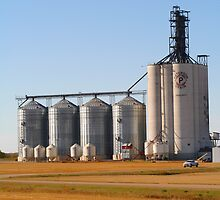 Grain Elevators by Madeline M  Allen
