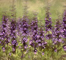Purple Sonnet by jules572