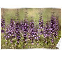 Purple Sonnet Poster