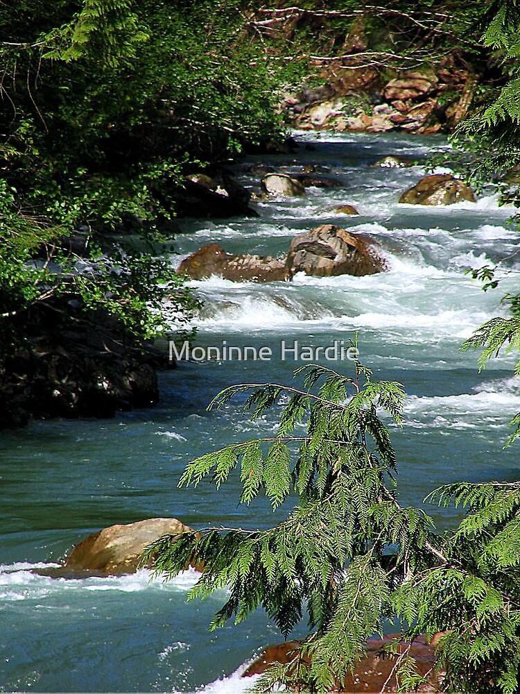 Bellingham WA Stream by Moninne Hardie