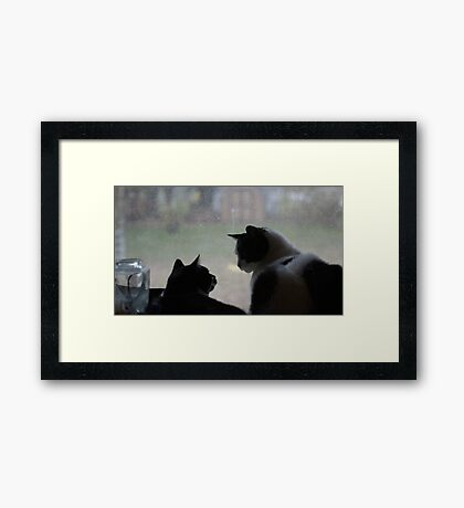 What You Looking At.? Framed Print