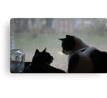 What You Looking At.? Canvas Print