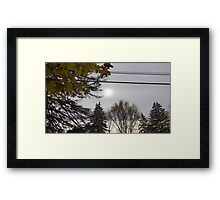 Cold but Beautiful Framed Print