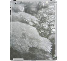 Water Feathers iPad Case/Skin