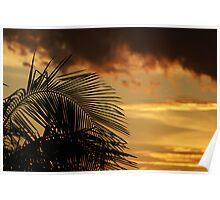 Palm Sky Poster
