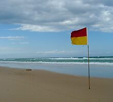 The Surf Flag #1 by FuriousEnnui