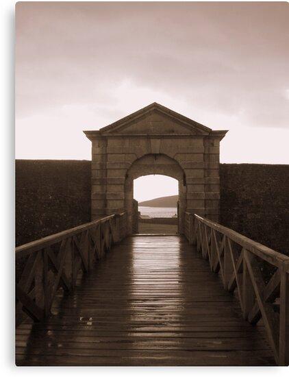 The Gateway by Paul Finnegan