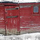 Old Red Shed by Pal Gyomai