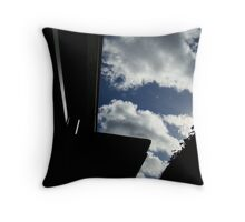 The Reflection of my Life Throw Pillow