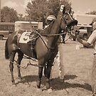 Horse Whisperer by Moninne Hardie