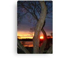 TREE FRAMED SUNSET Canvas Print