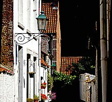 Lier - Small Beguinage street by Gilberte