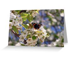 Butterfly in Pear Tree (Texas) Greeting Card