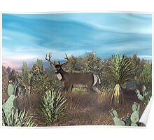 Texas Mule Deer Poster