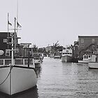 Eastern Passage by Fernlee
