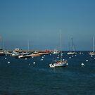 Boats in Catalina Island Bay by cfam