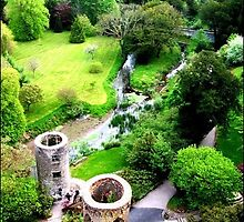 Blarney Castle, Cork  by Rebs O